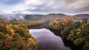 Wald, Talsperre, Urfttalsperre, Eifel, Nationalpark